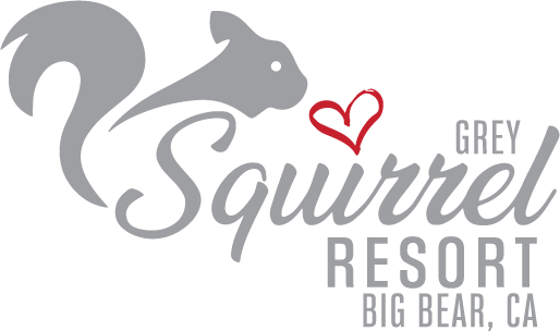 Grey Squirrel Resorts